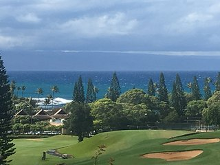 The most Gorgeous 2bd2ba OV Villa  in Kapalua! - Kapalua vacation rentals