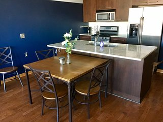 1 bedroom Condo with Internet Access in Minneapolis - Minneapolis vacation rentals