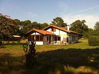 Authentique maison landaise dans un airial de chênes centenaires - Messanges vacation rentals