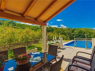 4 bedroom Villa in Kaldir, Istria, Croatia : ref 2374633 - Karojba vacation rentals
