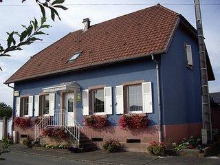 Gite-Halmer Appartement 3 étoiles sur la route du vin d' Alsace à Bergholtz - Bergholtz vacation rentals