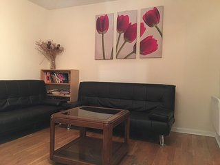 Two Bedrooms apartment in City Centre - Glasgow vacation rentals