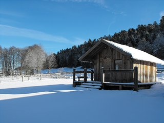 Nice Chalet with Balcony and Grill - Vassieux-en-Vercors vacation rentals