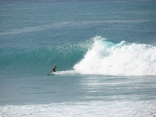 Direct Ocean Front at World Famous Banyan's Surf Break; fully updated w/wifi - Kailua-Kona vacation rentals