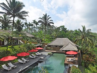 Luxurious and Gorgeous 5BR Villa and Resort north of Ubud - Payangan vacation rentals