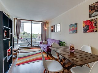 Central Relaxation - Santiago vacation rentals