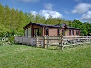 Nice 3 bedroom House in Biddenden - Biddenden vacation rentals