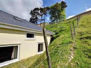 Cozy House in Llangurig with Television, sleeps 4 - Llangurig vacation rentals