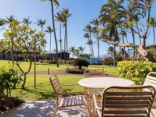 Napili Shores Resort B-109 - Lahaina vacation rentals
