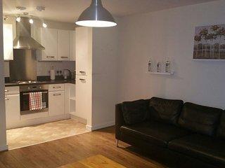 Beautiful  Apartment in Birmingham City Centre - Birmingham vacation rentals