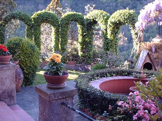 Yoga and Meditation in the magic aura of Fontelucente - Fiesole vacation rentals