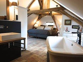 Château de Moison - Domaine Eco-Nature, La Suite Ardoise - Ivoy le Pre vacation rentals