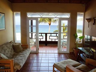 Beachfront Penthouse - Sandy Beach (Pelican Point) - Rincon vacation rentals