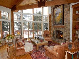 101 Park Avenue - Aspen vacation rentals