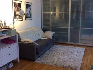 Bel appartement situé tout prêt de Paris - Nogent-sur-Marne vacation rentals