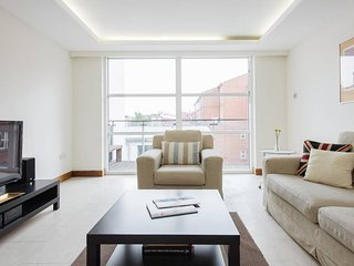 Bright Luxury Apartment - London vacation rentals