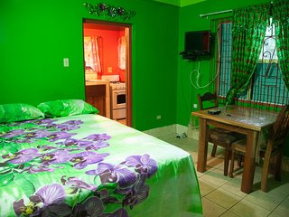 Wonderful House with Internet Access and A/C - Negril vacation rentals