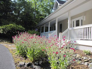 Luxury Mountain Home Near Brevard & Hendersonville in Pisgah Forest (Dupont) - Pisgah Forest vacation rentals