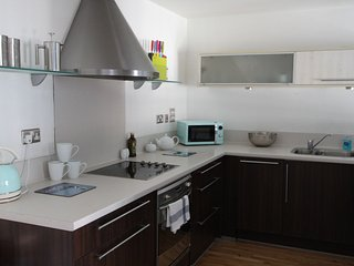 Ideal City Centre Apartment with Parking - Bristol vacation rentals