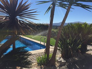 302 Villa with pool near Portugal - Tomino vacation rentals