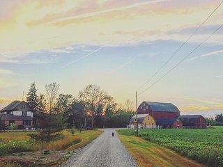 Pine Creek Acres Country Retreat - Pelham vacation rentals