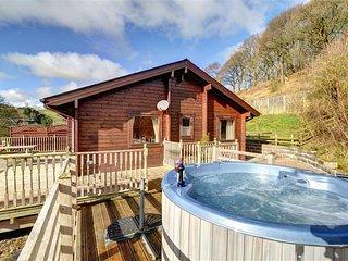 Wonderful 2 bedroom Cottage in Llangunllo - Llangunllo vacation rentals