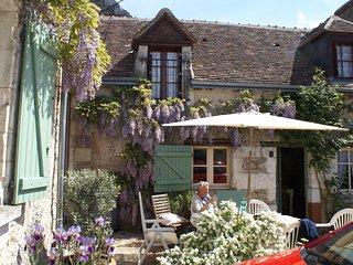 Loire Valley nr Chenonceau - rural farm cott suit 2 couples/family nr vineyards - Saint-Georges-sur-Cher vacation rentals