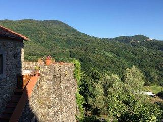 Casa Nicola, large stylish house in Medieval Tuscan mountain village - Popiglio vacation rentals