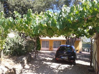 Lovely 2 bedroom House in Alfeizerao with Internet Access - Alfeizerao vacation rentals