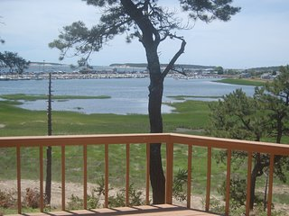 Spectacular Wellfleet Waterfront - Wellfleet vacation rentals