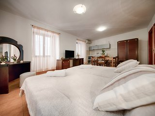 Nice Studio with Internet Access and Wireless Internet - Vis vacation rentals