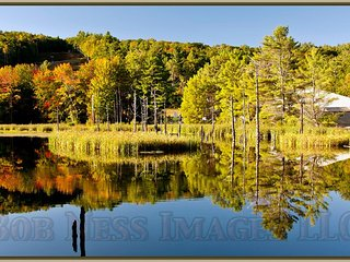 Portsmouth Pond Cabin#6 of 12, for 2-8 Guest, Wolfeboro, near Lake Winnipesaukee - Wolfeboro vacation rentals