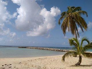 Studio RDC  Grenadine : Plages à 250m & Commerces à 200m - Sainte Anne vacation rentals