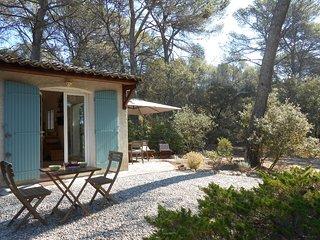 MAISON D'HÔTES AVEC PISCINE PRIVEE A CÔTE D'AIX - Aix-en-Provence vacation rentals