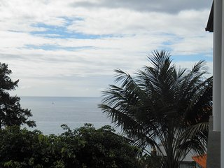 Studio Apartment on the Garden with Ocean View - Funchal vacation rentals