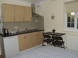 Cosy and comfy Double room with en-suit, kitchennet and breakfast - Greenford vacation rentals