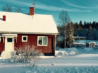 Comfortable House with Housekeeping Included and Television - Ludvika vacation rentals