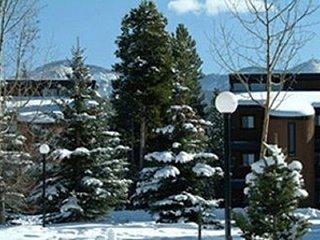 Cozy 3 bedroom Condo in Winter Park - Winter Park vacation rentals