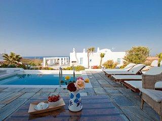Comfortable Vourvoulos Villa rental with Internet Access - Vourvoulos vacation rentals