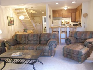 Cozy 2 bedroom Condo in Incline Village - Incline Village vacation rentals