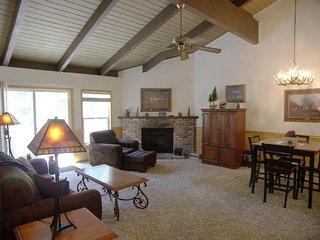 Comfortable 3 bedroom Incline Village Condo with Internet Access - Incline Village vacation rentals