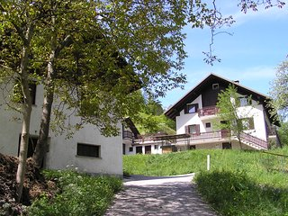 Koren Apartments sleep 7 BBQ 2 balconies riverside - Cerkno vacation rentals