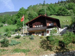 Nice House with Television and DVD Player - Riederalp vacation rentals