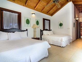 Casa de campo, 5 min from the beach walking - Altos Dechavon vacation rentals