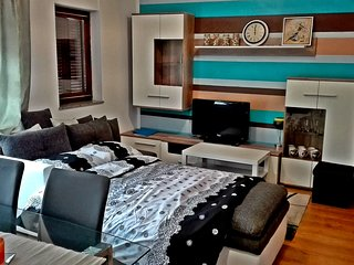 "Studio Apartment ""Dream"" Fužine - Fuzine vacation rentals"