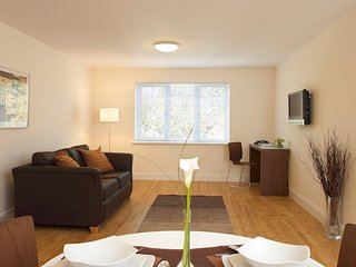 Nice Condo with Internet Access and Wireless Internet - Farnborough vacation rentals