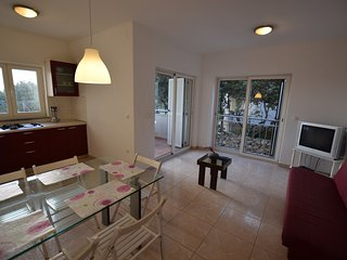 Comfortable apartment with terrace, 400 m distant from the sea! - Mandre vacation rentals