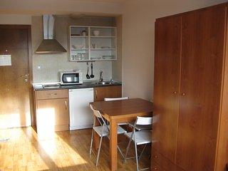 Nice Condo with Elevator Access and Television - Pradollano vacation rentals