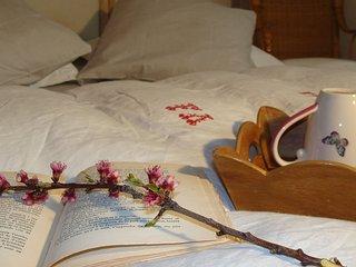 Chaumarty - Chambre hotes - L'Amalfitana - 45 km au Sud de Toulouse - Gaillac-Toulza vacation rentals