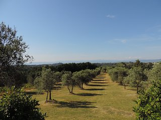 Super Villa with Private Pool and Tennis Court - San Miniato vacation rentals